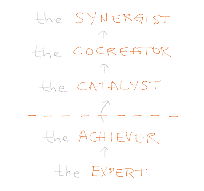 The five stages of maturity: the Expert, the Achiever, a development ceiling, the Catalyst, the Cocreator, the Synergist