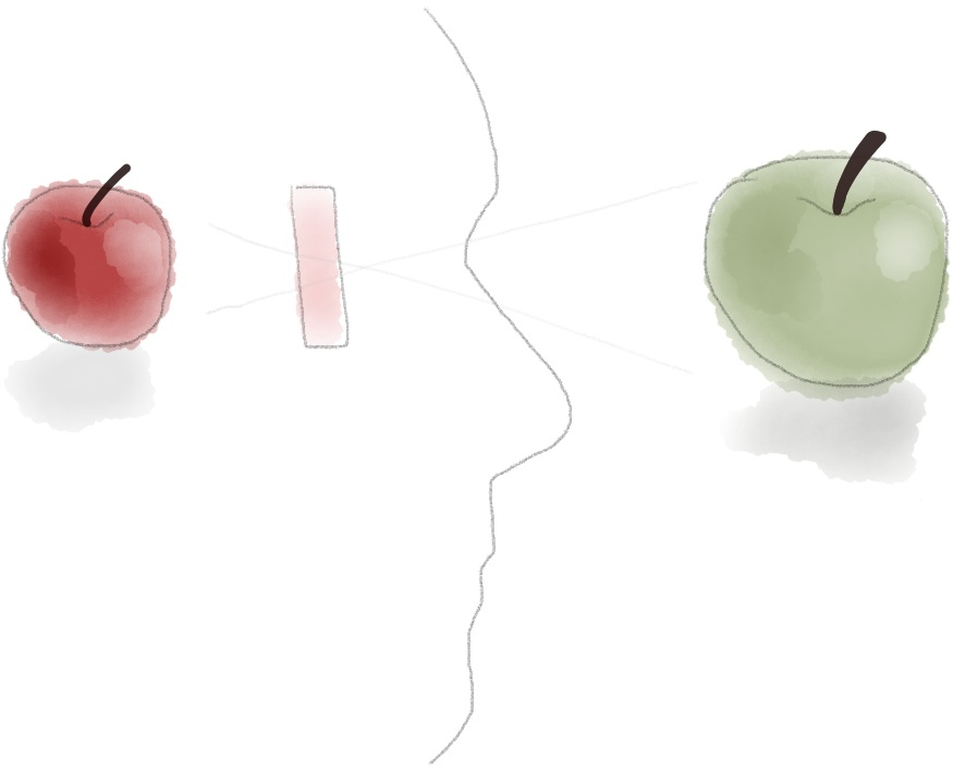 A mind with a filter looks at a green apple, interprets it as a red apple