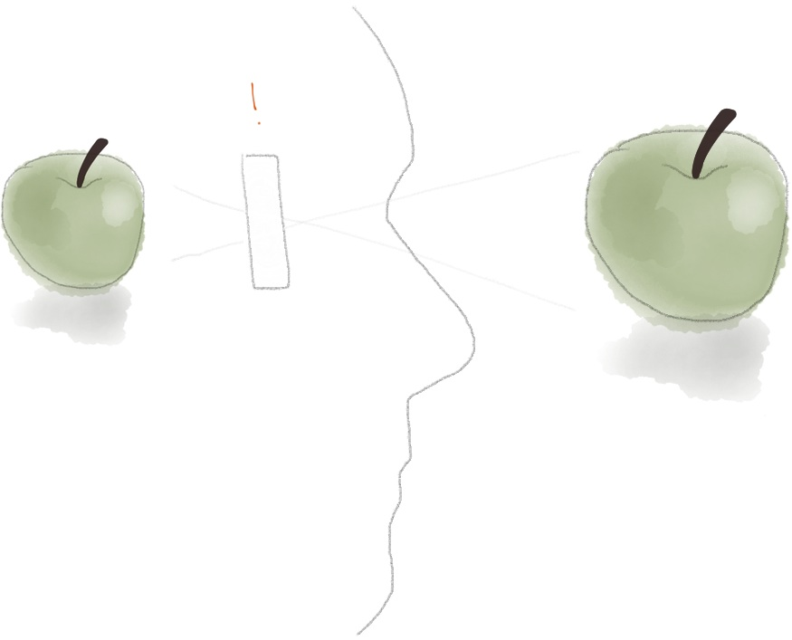 Identifying the presence of the filter, the mind sees the real object: a green apple